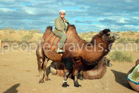 Camel Back Riding tour in Uzbekistan