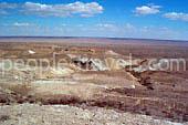 Fotos von Aral - Foto-Galerie von Usbekistan