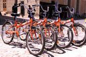 Las fotos de la renta de bicicletas - Galeria de fotos de Uzbekistán
